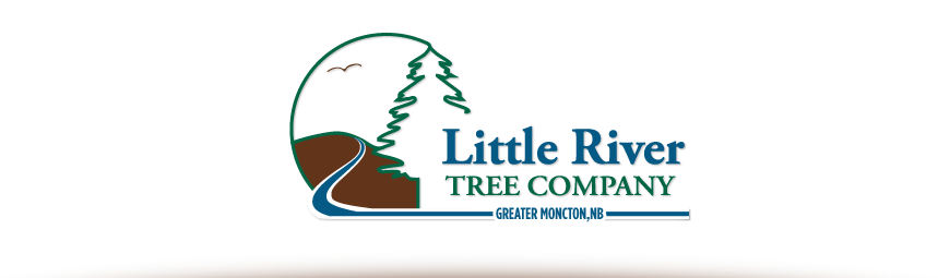 Little River Tree Company